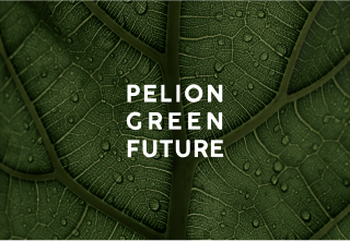 pelion green future logo